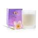 Coconut Wax Candle - US-C-WV